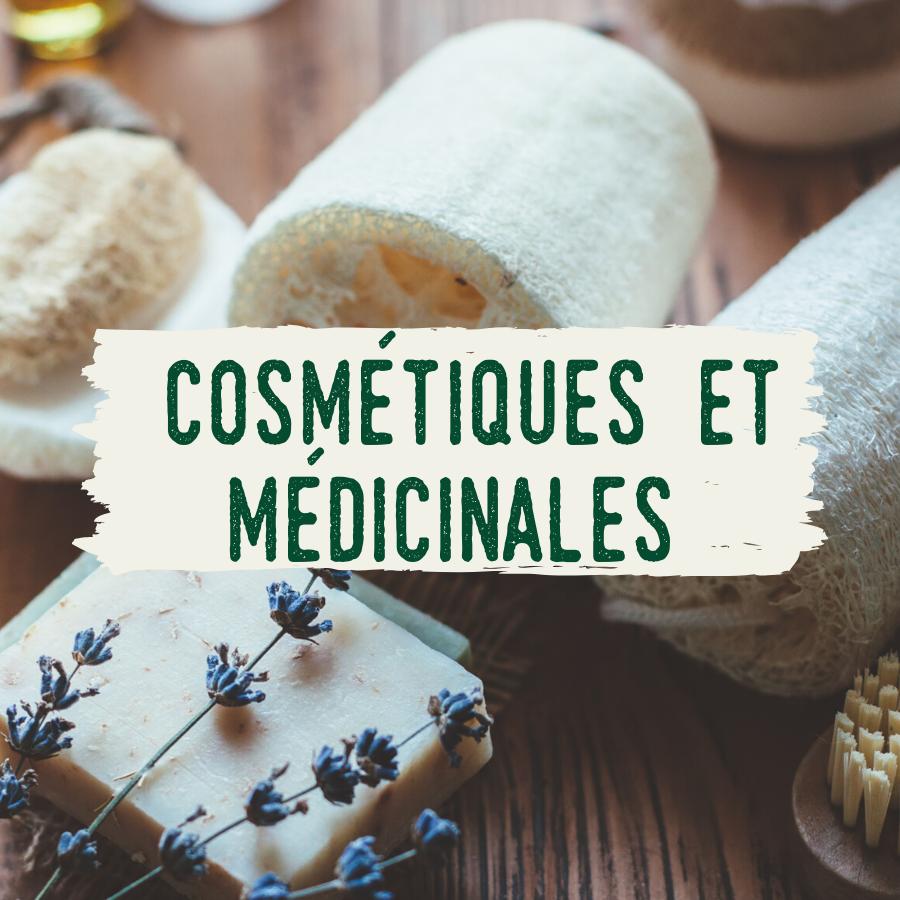 recettes cosmétiques et médicinales