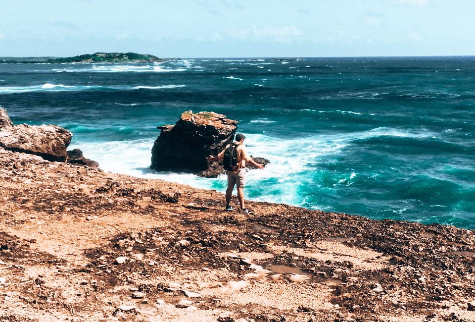 Martinique- savane des pétrifications
