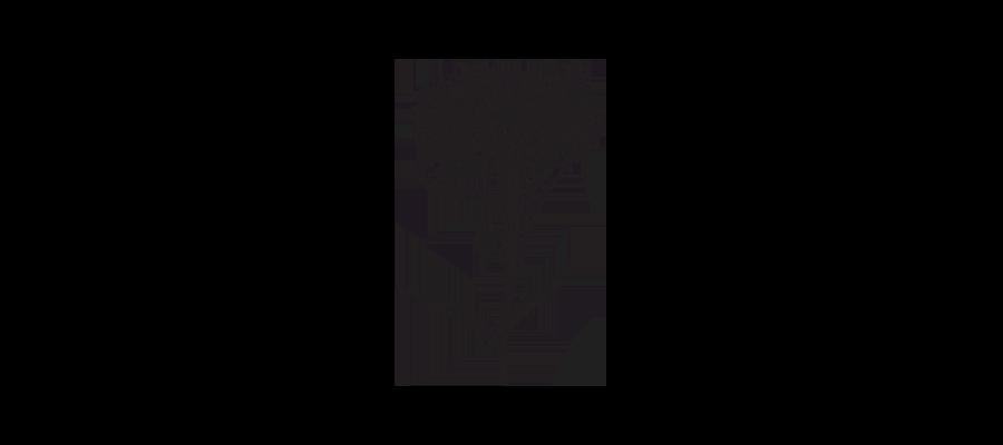 Illustration - fleur pissenlit