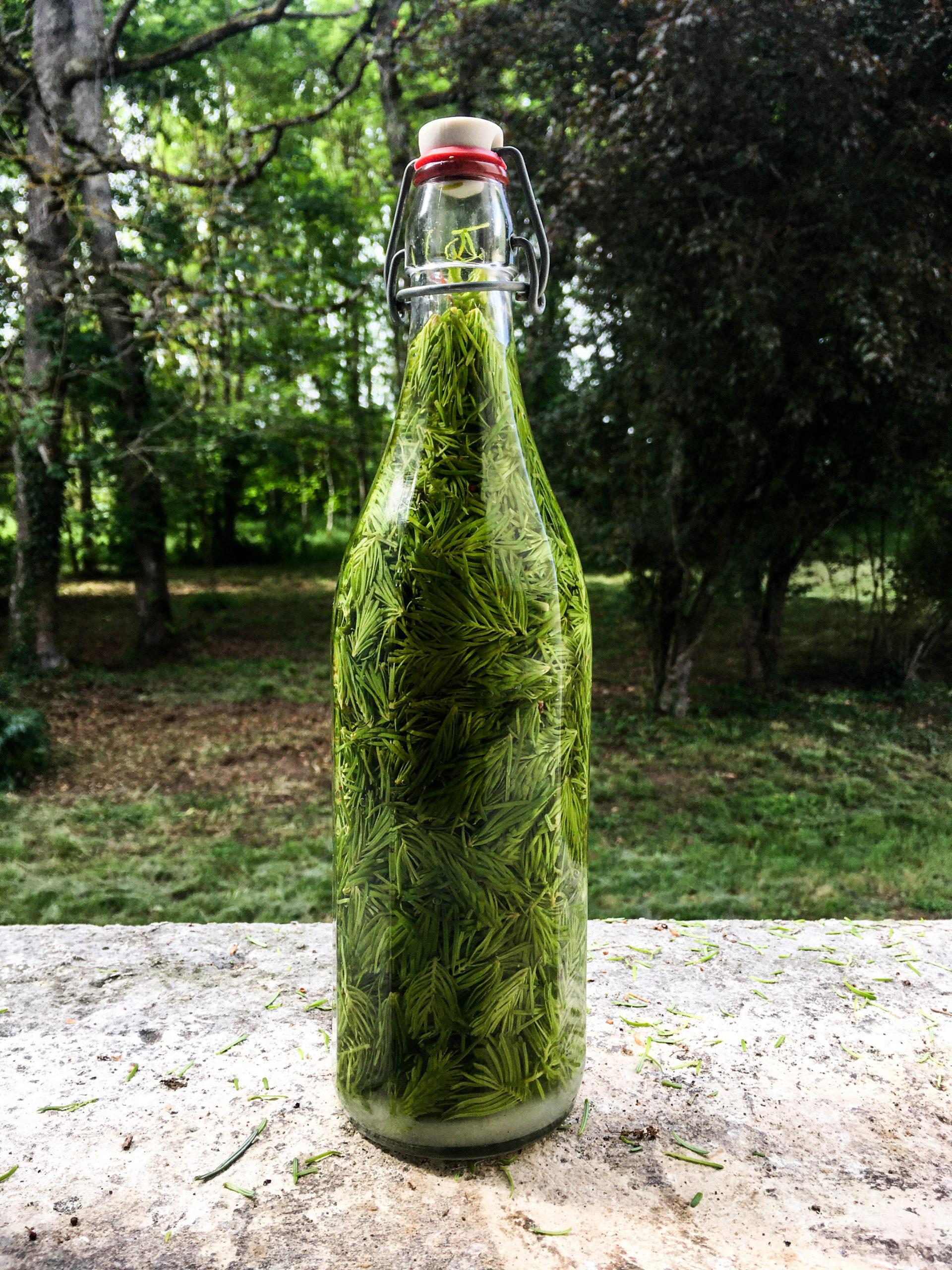 Alcool-sapin